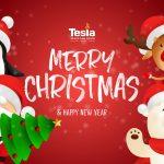 Tesla Talk Week December 25th 2020